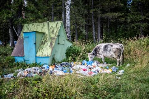 Das übliche Müllproblem
