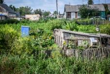 Verwucherte Gärten